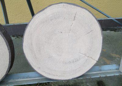 pnie-betonowe-2